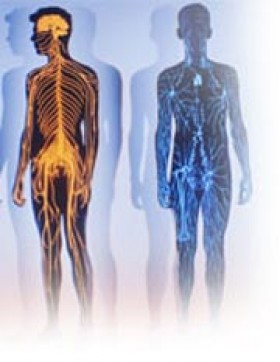 Рак молочных желез — Диагностика